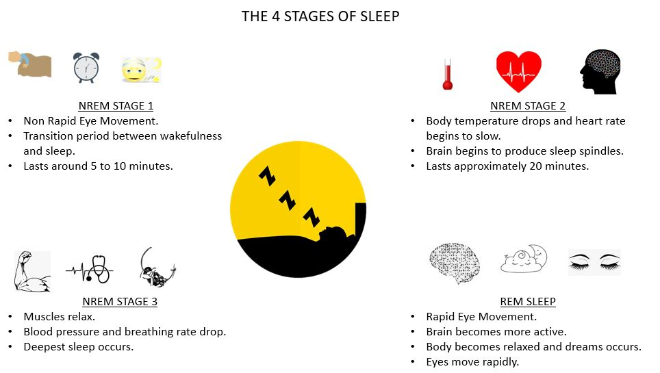 4 Stages of Sleep for mental fitness